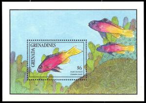 GRENADA-GRENADINES 1244 - Fairy Basslet Fish 'Souvenir Sheet' (pa91627)