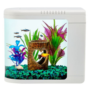New Top Fin Fish Eye View Aquarium 2 Gallon - Great for Betta Fish & Goldfish