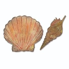 Sizzix Bigz / Texture Fades - Seashells - Cutting Die Big Shot by Ellison 662706