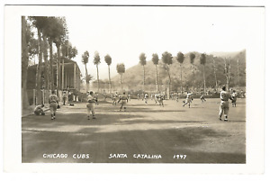Baseball: 1947 Chicago Cubs; Santa Catalina Island, CA; Real Photo Postcard