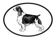Dog Breed Oval Vinyl Car Decal Black & White Sticker - Springer Spaniel