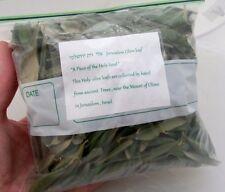 Israeli Olive Leaf From Jerusalem 70 Gr/2.5Oz Organic Olea Europaea Diet Tea זית