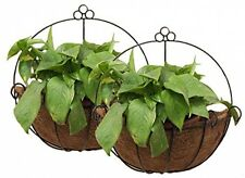 PVC Coated Metal Wall Hanging Planter Basket Coco Liner Indoor Outdoor 2 x pcd
