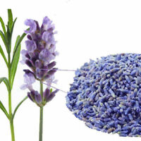 100g Lavender dried flower tea 养心安神 Chinese herbal gift good for sleep