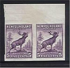Newfoundland Canada SG 213 5c Caribou animal deer Stamp Proof Pair