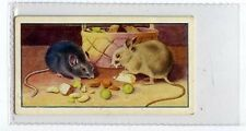 (Ja8543-100)  GALLAHER,AESOPS FABLES,THE TOWN MOUSE & THE COUNTRY MOUSE,1931#24