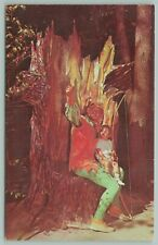 Old Forge New York~Enchanted forest~Storybook~Robin Hood~Bow~Postcard~1960s
