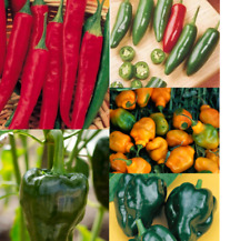 Hot Pepper Seeds Mixed Non-hybrid Varieties 125 Seeds