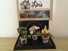 Reutter porcelain Dolls House 1:12th Scale Set 3 Flower Pots & Flowers (1458/8)