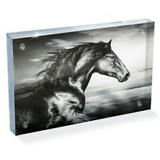 "Beautiful Black Horse Photo Block 6 x 4"" - Desk Art Office Gift #14332"
