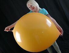 """1 x Cattex 32"""" Riesen-Luftballon verschiedene Farben m. Link (32"""" balloon +link)"""