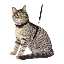 Katzengeschirr - Leine + Halsband - Katzengarnitur, Velours - Schwarz