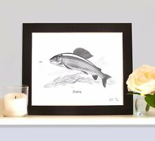 GRAYLING Fishing Fish Art Print MOUNTED Picture Present For Fisherman Angler