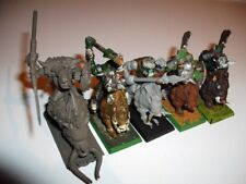 Warboss y jabalí chicos orcos + Goblins Warhammer