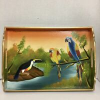 "Hand Painted Tropical Bird Serving Tray Made in Honduras 11""X15"""