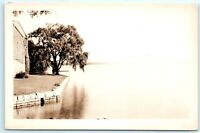 VTG RPPC Real Photo Copake Lake? NY New York Lonely Tree A2
