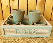 6 Rustic Garden Plant Pots & Wooden Tray Flowers Herb Seeds Window Kitchen Clear