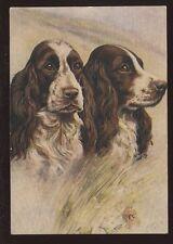 DOGS Springer Spaniels artist drawn PPC No8