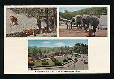 Japan The Higashiyama Zoo Animals M/view c1950/60s? PPC