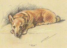 Welsh Corgi Puppy - Matted Dog Print - Lucy Dawson