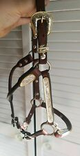 Circle Y weanling Show halter! Dark oil with gold rope edge *FANCY* & flattering