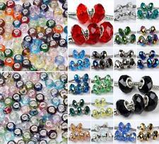 5pc Handmade Lampwork Murano Glass European Beads Silver Core Fit Charm Bracelet