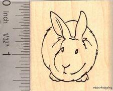 Bunny Rabbit Rubber Stamp E13104 WM