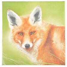 NAPKINS PAPER FOX