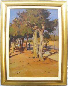 Angiolo VOLPE (Livorno 1943) Ardenza splendido OLIO su TELA cm 70x50 + cornice