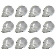 Dozen Mini Translucent Clear Skull Gothic Halloween Decor 12pc 1 inch Tall