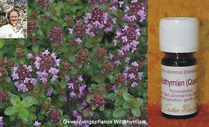 WILD-THYMIAN (QUENDEL) Thymus serpyllum Türkei 5ml 100% naturr. ätherisches Öl