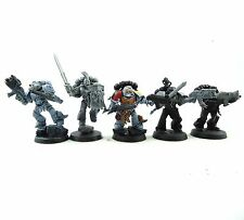 WARHAMMER 40K ARMY  SPACE MARINE SPACE WOLVES MARINES PART PAINTED  GK24