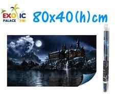 HYDOR H2SHOW MAGIC WORLD SFONDO CON GEL PER ACQUARIO 80x40cm DECORAZIONE POSTER