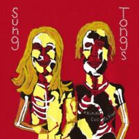 Animale Collective - Sung Tongs Nuovo CD