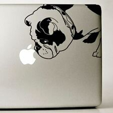 English Bulldog Large Clear & Black Vinyl Decal - NEW - FREE SHIPPING ASAP