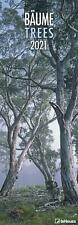 Bäume 2021 - Panoramakalender - Naturkalender - Wandkalender - Kingsize - Wälder