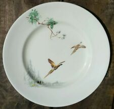 "Excellent 4 Royal Doulton ""The Coppice"" 8 5/8"" 22cm Side Plates Set Of Four"