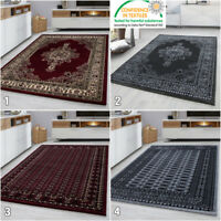 Traditional Rug New Modern Oriental Pattern Carpet Small X Large Living Room Mat