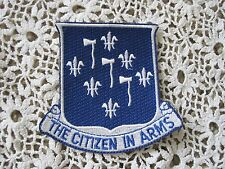 333rd Air Borne Infantry Regiment Patch