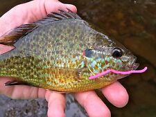 Fly Fishing Flies (Bass, Bream, Perch, Trout, Carp) San Juan Worm Pink (6 flies)