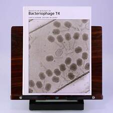 Molecular Biology of Bacteriophage T4 by Jim D. Karam, et al.