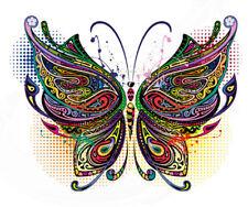 Color Bügeltransfer Bügelbild Applikation bunter Schmetterling 037