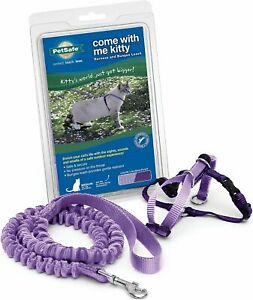 HARNESS AND BUNGEE LEASH