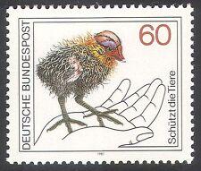 Germany 1981 Black Coot/Birds/Ducks/Nature Protection/Conservation 1v (n31504)
