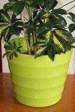 Quality Lime Green Rigid Plastic Plant Pot Cover-Diameter 28cms