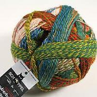 Schoppel Wolle Zauberball Crazy Yarn & Knitting Supplies