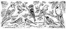 Rubber Stamp Backyard Bird Border Background Pine Tree Northwoods O1729