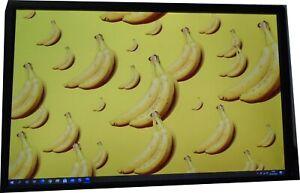 """Dell UltraSharp U2412M 24"""" Full HD 24"""" MONITOR  1920 X 1200 NO STAND"""