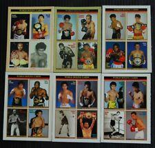 Japan Boxing Magazine World Boxing Card Sheet  1997 12 set & STARDOM card