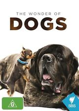 The Wonder of Dogs - Chihuahua NEW R4 DVD